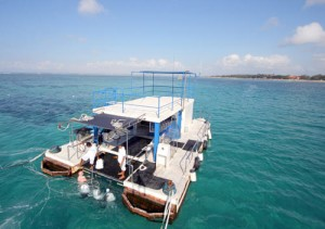pontoon 1 at bali seawalker